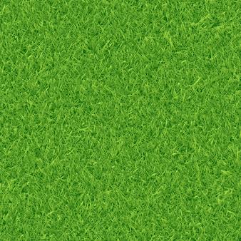 Grünes gras textur vektor hintergrund