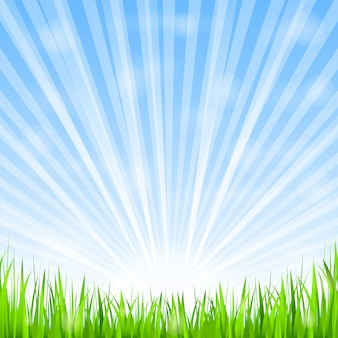 Grünes gras und glänzende sonne, illustration des vektors eps10