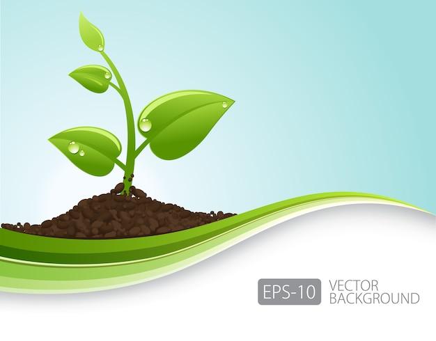 Grünes keimwachstum und wellen
