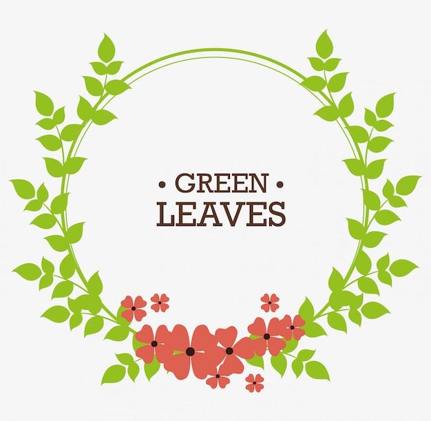 Grünes natur- und blattdesign.