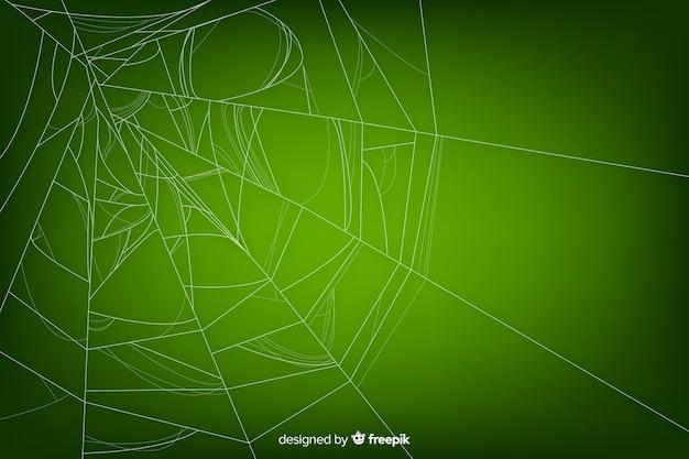 Grünes realistisches spinnennetz mit steigung