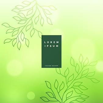 Grün lässt Hintergrund mit weichem bokeh Effekt