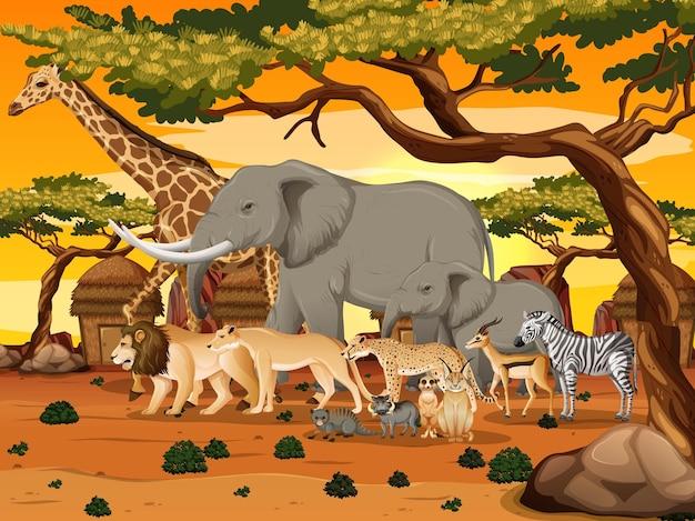 Gruppe des wilden afrikanischen tieres in der waldszene