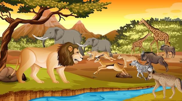 Gruppe des wilden afrikanischen tieres in der waldszene Kostenlosen Vektoren