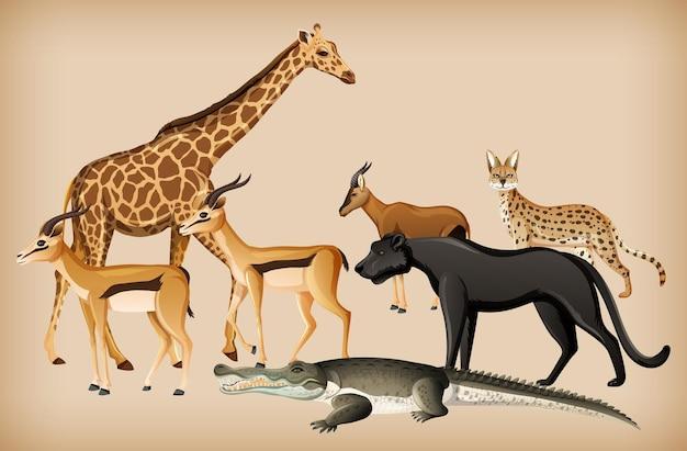 Gruppe des wilden tieres auf hintergrund