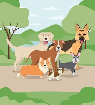 Gruppe hundehaustiere in den lagercharakteren