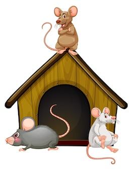 Gruppe von niedlichen mäusen mit kleinem haus lokalisiert auf weißem hintergrund