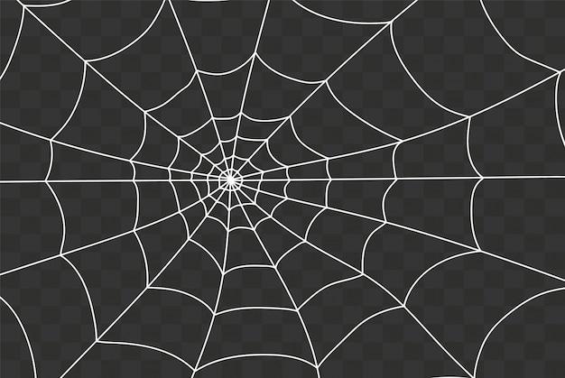 Gruseliges spinnennetz