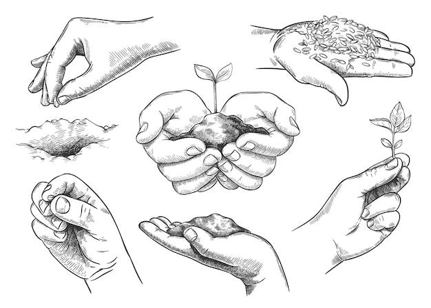 Hände mit pflanzensprossen. bauernhand, die erde hält und samen pflanzt. natur retten, neue bäume wachsen lassen. landwirtschaft und ökologie skizzenvektorsatz. umweltschutzsymbole isoliert
