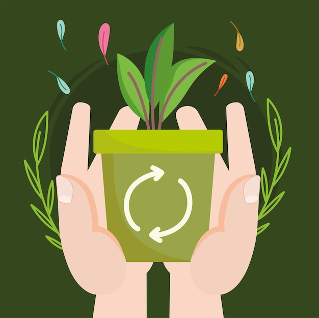 Hände topfpflanze