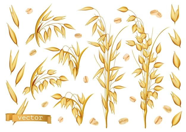 Haferpflanzen, haferflocken-symbolsatz Premium Vektoren