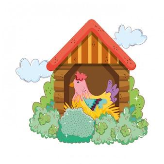 Hahnvogelfarm im holzhaus