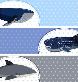Haifisch und wale auf blauen hintergründen