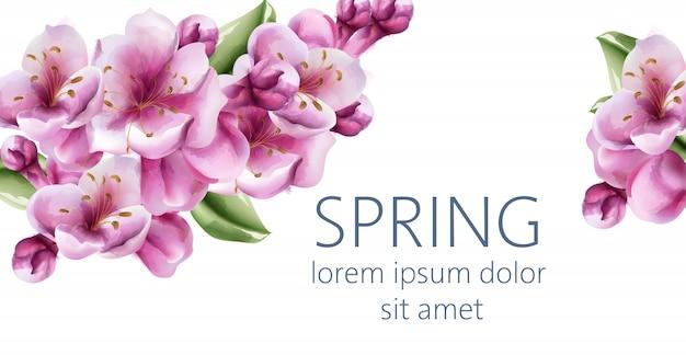 Hallo frühlingskirschblütenblüten mit platz für text