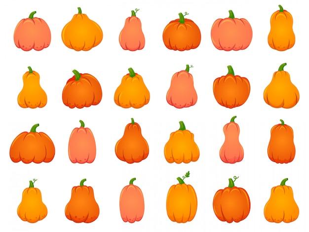 Halloween herbst kürbisse. traditionelle karikaturdekoration, feiertagsorangenkürbis, oktober halloween-ernteillustrationsikonen gesetzt. traditionelles halloween-gemüse, feiertagsfeier