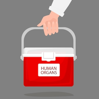 Hand, die einen tragbaren kühlschrank für den transport von menschlichen spenderorganen hält