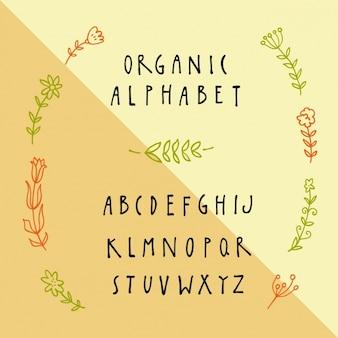 Hand gezeichnet alphabet design