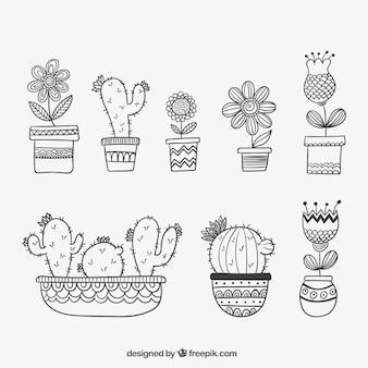 Hand gezeichnet aufgetragen pflanzen