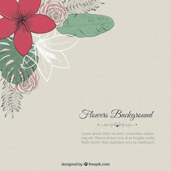 Hand gezeichnet Blumen Hintergrund