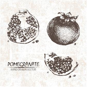 Hand gezeichnet granatapfel design