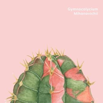 Hand gezeichnet gymnocalycium mihanovichii mond kaktus