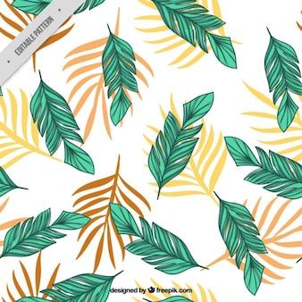 Hand gezeichnet palmblätter muster