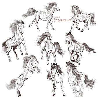 Hand gezeichnet pferde sammlung