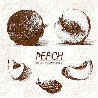 Hand gezeichnet pfirsich design