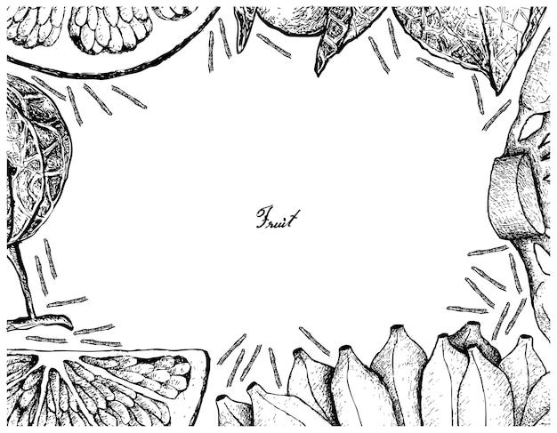 Hand gezeichnet vom frischen frucht-rahmen auf weißem hintergrund