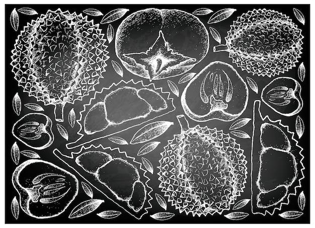Hand gezeichnet von durian und persimone auf tafel-hintergrund