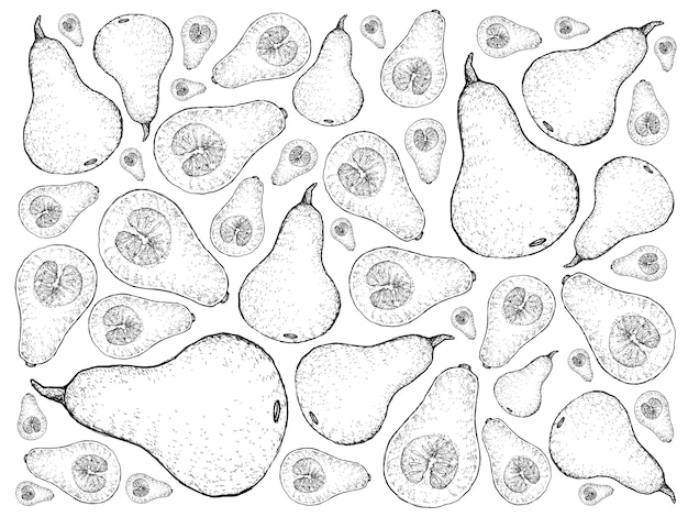 Hand gezeichnet von frischem butternut squashes-hintergrund
