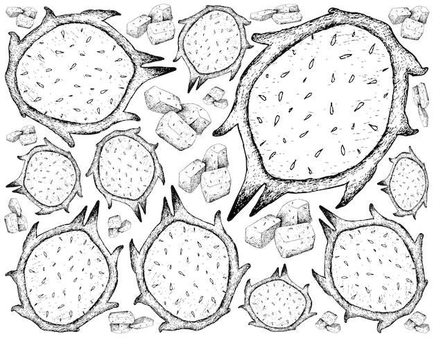 Hand gezeichnet von frischem reifem drachenfruchthintergrund