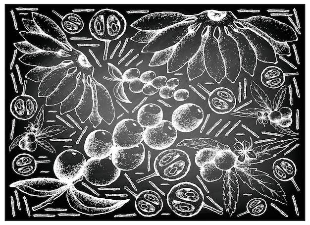Hand gezeichnet von frischen früchten auf tafel-hintergrund