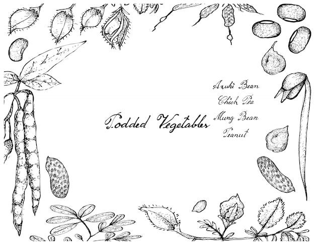 Hand gezeichnet von podded vegetables frame