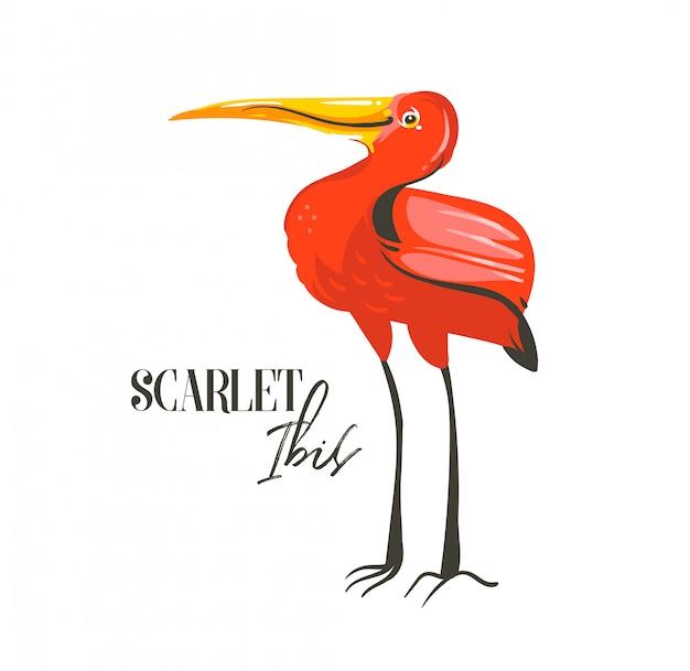 Hand gezeichnete abstrakte karikatur-sommerzeit-grafikdekorationsillustrationen mit dem exotischen tropischen regenwald-scharlachroten ibis-vogel auf weißem hintergrund