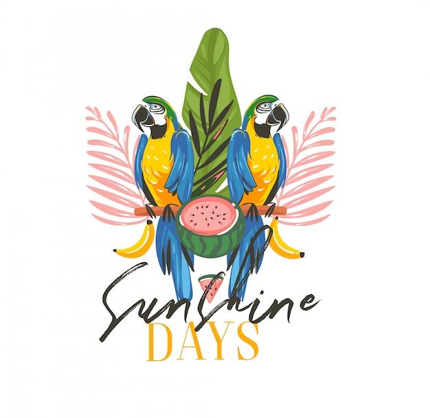 Hand gezeichnete abstrakte karikatur-sommerzeit-grafikillustrationen mit exotischem tropischem zeichen mit regenwald-papageien-ara-vögeln, wassermelone und sonnenschein-tagestext auf weißem hintergrund