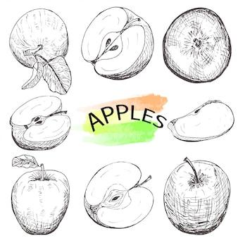 Hand gezeichnete äpfel eingestellt lokalisiert auf weißem hintergrund.