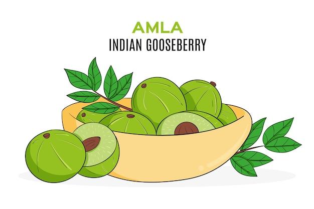 Hand gezeichnete amla-frucht illustriert