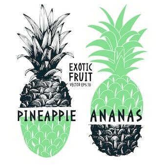 Hand gezeichnete ananas der collage