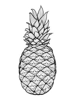 Hand gezeichnete ananas. illustration. auf weiß isoliert. gekritzel. skizzieren.