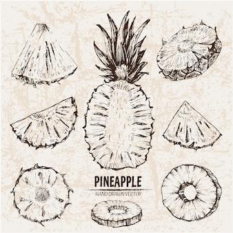 Hand gezeichnete ananas-sammlung