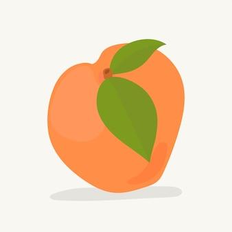 Hand gezeichnete aprikosenfruchtillustration