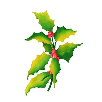 Hand gezeichnete aquarell-weihnachtskirsche u. -blätter