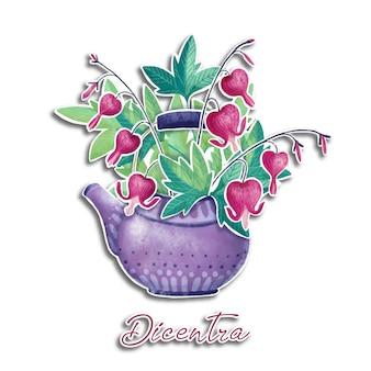 Hand gezeichnete aquarellillustration von dicentra blüht in der teekanne