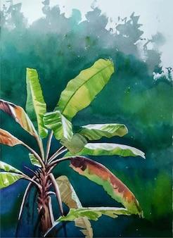 Hand gezeichnete aquarellpflanze im himmel mit wolkenillustration