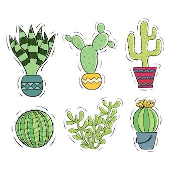 Hand gezeichnete art der kaktussammlung mit farbe