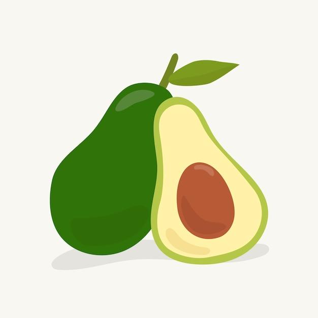 Hand gezeichnete avocadofruchtillustration