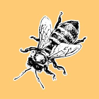 Hand gezeichnete bienenskizze schwarze honigvektorillustration