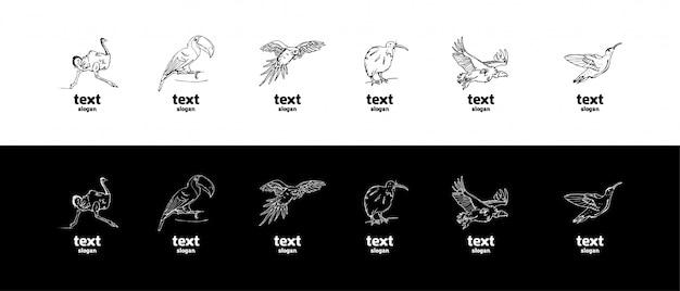 Hand gezeichnete bleistiftgraphiken, vögel eingestellt