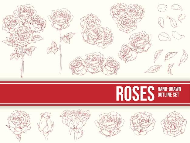 Hand gezeichnete blumen rosen umriss ornament skizze blätter blütenblätter